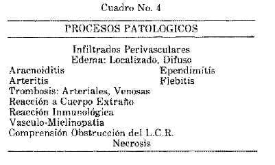 Procesos Patológicos Parasitosis y Micosis