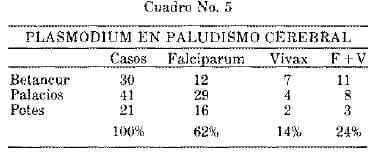 Plasmodium en Paludismo Cerebral