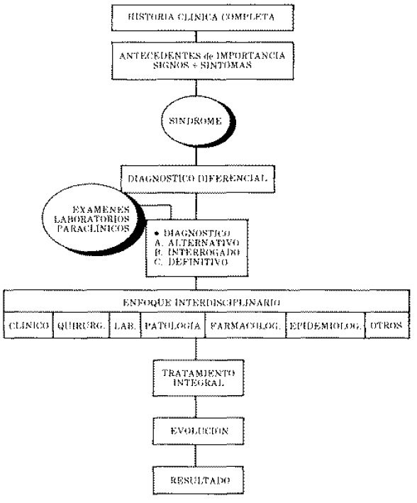 Método Clínico - Enfoque Por Síndromes