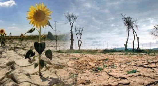 Historia Cambio Climático