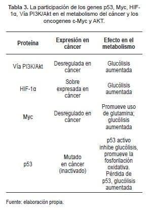 La participación de los Genes p53