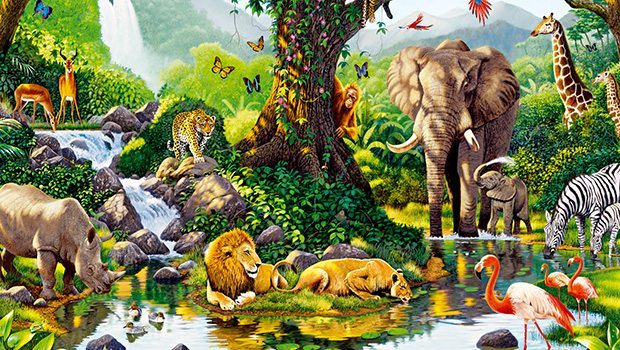 Resultado de imagen de La diversidad de la Vida en un mundo como la Tierra