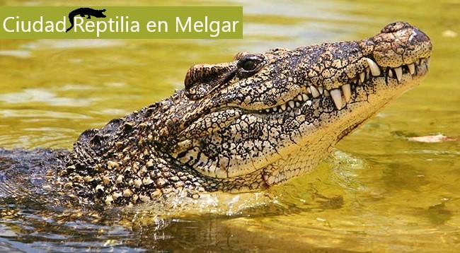 turismo en Melgar