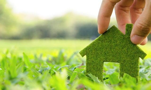 Equilibrio ecologico estabilidad ambiental educacion - Luz de vida productos ecologicos ...
