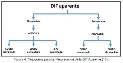 Flujograma para la interpretación de la DIF