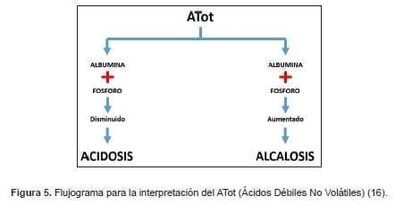 Flujograma para ATot (Ácidos Débiles No Volátiles)