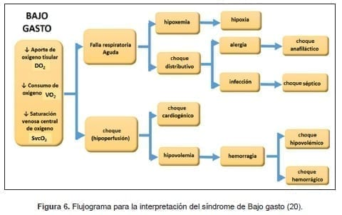 Flujograma síndrome de Bajo gasto