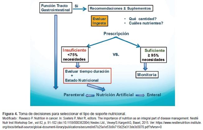 Seleccionar el tipo de soporte nutricional