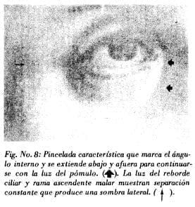 Pincelada del ángulointerno en ojo