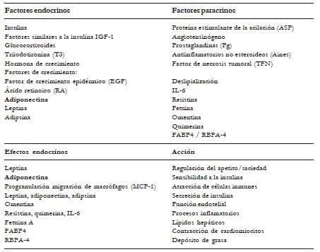Factores endocrinos y paracrinos involucrados en la diferenciación del adipocito