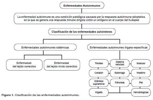 Clasificación de las enfermedades autoinmunes