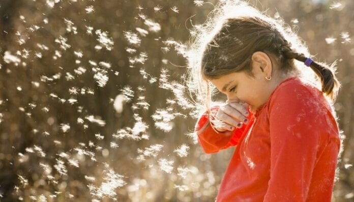 alergia en niños