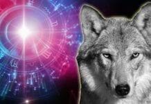 Qué Animal Eres según tu Signo