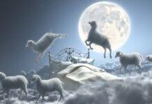 soñar que persigue un toro