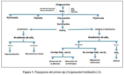 Flujograma del primer eje (Oxigenación/Ventilación)