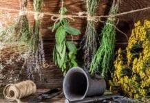 Baños con Hierbas para Limpiar la Energía