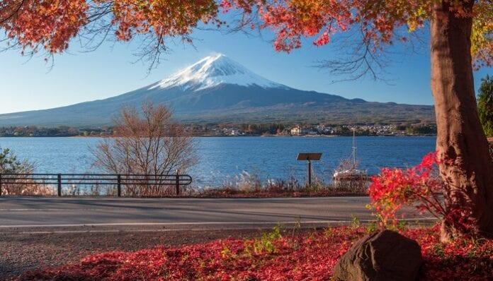 5 Lugares Inolvidables que Debes Visitar si vas a Japón