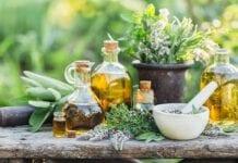 5 Plantas Aromáticas y Curativas que Puedes Tener en Casa