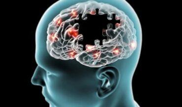 Neurobiología de la Conciencia