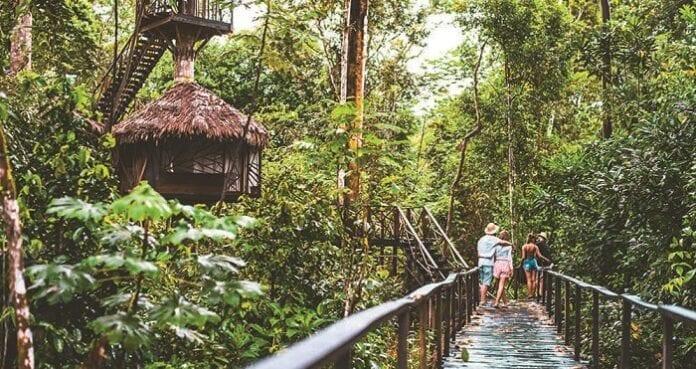 Planes para Hacer en la Amazonía Colombiana