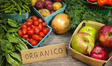 Reconocer Alimentos Orgánicos