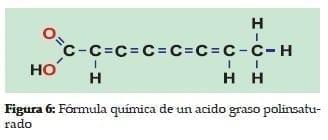 Fórmula química de un acido graso polinsaturado