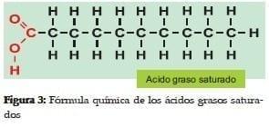 Fórmula Química de los Ácidos Grasos Saturados