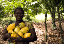 Agroindustria colombiana