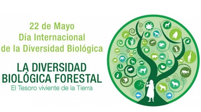 dia internacional de la diversidad biologica