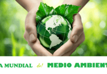 Día Mundial del Medio Ambiente