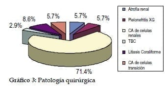 Nefrectomía Radical Laparoscópica: Patología Quirurgica, Gráfico
