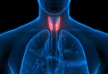 Hipotiroidismo, Guía de Salud