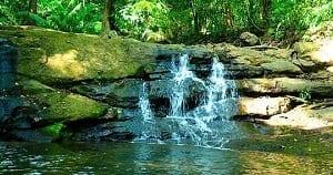Parque Nacional Soberanía Panamá