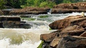 Reserva nacional natural Nukak, Amazonas colombiano