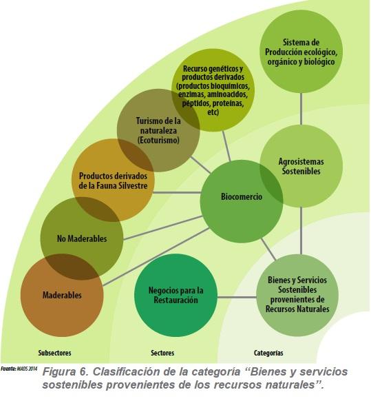 Bienes y servicios sostenibles provenientes de los recursos naturales