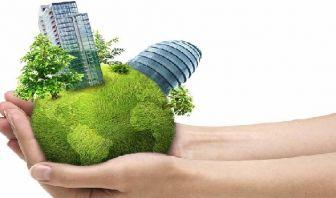 Oferta y Demanda de los Negocios Verdes