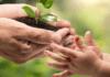 Importancia de cuidar el medio ambiente