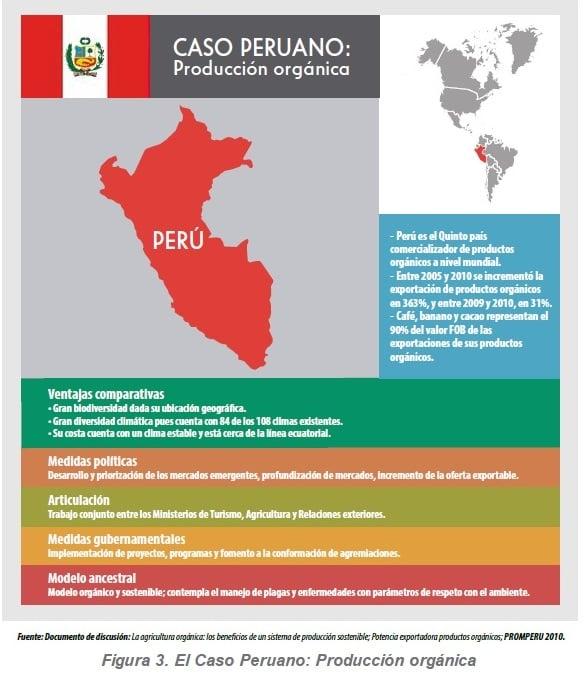 El Caso Peruano: Producción orgánica