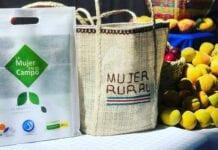 Fundación Mujeres de Éxito de la Dra. Luz Mary Guerrero