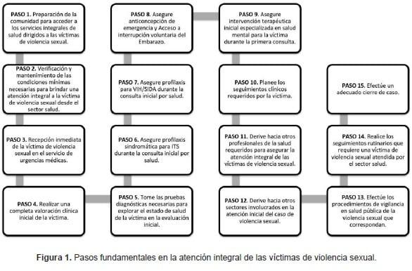 Pasos fundamentales en la atención integral de las víctimas de violencia sexual.