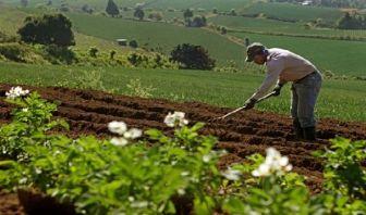 Sistema de Innovación Agropecuaria