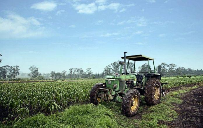 Temas de agroindustria - Categoría