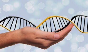 Informes Epigenéticos