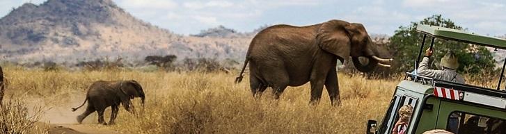 Reserva Natural Masái Mara