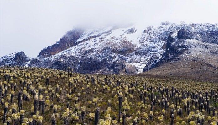 Cordillera Central en Colombia