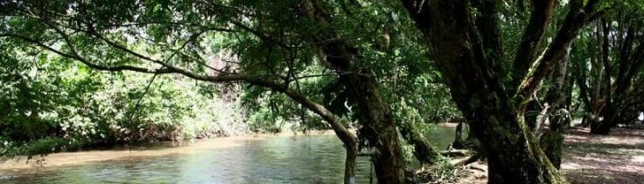 Santuario de Flora Plantas Medicinales Orito Ingi – Ande