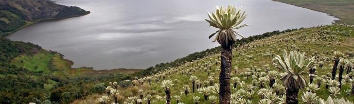 Santuario de Flora y Fauna Galeras