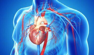 Eventos Cardiovasculares