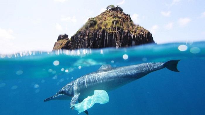 Importancia de los Océanos