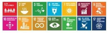 Pacto por la descentralización - ODS relacionados